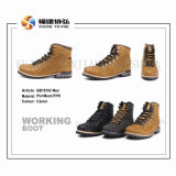 Shoes, Work Boots, Sport Shoes, Comfort Shoes, Leisure Shoes, Men Shoes, Footwear, Sneaker Shoes, Hot Selling Shoes