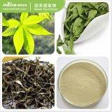 Health Food Addictive Rubusoside Sweet Tea Extract
