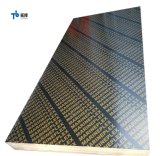 Top Quality Marine Plywood Sheet From China Factory