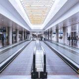 OEM/ODM Escalator Sidewalk Passenger Conveyor Comfortable Reliable Moving Walkway