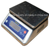 Digital Waterproof Stainless Steel Weighing Counting Scale with Ce Certificate