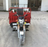 Three Wheel Cargo Motorcycle Tricycle with EEC