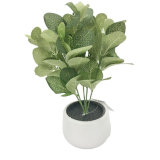 Indoor Decoration Real Touch Feel Mini Artificial Tropical Plants