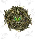 8912 Chinese Organic EU Standard Sencha Green Tea