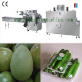 Fruit and Vegetable Pillow Packing Machine