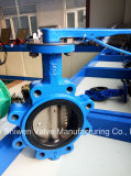 Ductile Iron Lug Type Butterfly Valve with EPDM Seat
