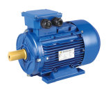 Aluminum Ms2/Ms3 Series Ie2/Ie3 Motor