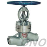 Water-Sealed Wcbcarbon Steel Globe Valve Thread