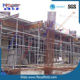 High Quality Scaffolding Ringlock System Standards (FF-B003D)