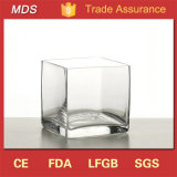 Good Quality Cheap Square Clear Glass Vase for Home Decoration