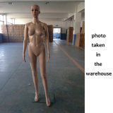 Cheap Hotsale Full-Body Female Mannequin with Glass/Metal Base