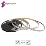 Best Price 12V/24V Christmas Light, 5050 RGB LED Strip Light with Ce RoHS and 3 Years Warranty
