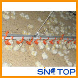 Automatic Poultry Equipment for Chicken Farm