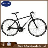Good Price Mountain Bike Fitness Bikes (FX6.1-4)