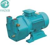 Single Stage Liquid Ring Vacuum Pump (price) /Air Pump