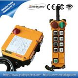 Hot Sell 8 Directions 220VAC Industrial Radio Remote Control for Crane Hoist F24-8d