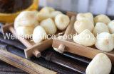 Wholesale Good Quality Vf Garlic