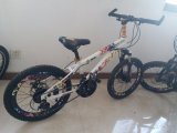 Single Speed Mountain Children Bicycle