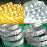 Warm White 5630 SMD LED Ropelighting 220V 110V 120V