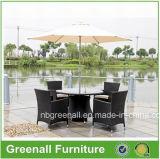 Wicker Garden Furniture/Patio Dining Sets/Outdoor Patio Set