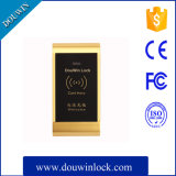 Software Safe Electric Mifare Card Cabinet Locker Lock