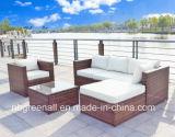 Hot Sell Garden Sofa for Wicker/Rattan Outdoor Patio Furniture
