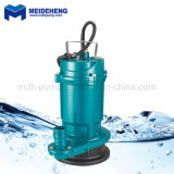Mini Single Phase 220V AC 180W Qdx Submersible Clean Water Pump