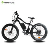 Fat Snow Mountain Electric Bike Support Wholesale and Sample
