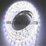 China Wholesale 12/24V IP68 Flexible LED SMD 2835 Strip