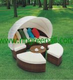 Luxury Sun Bed for Rattan/Patio Outdoor Garden Furniture (GN-3652L)