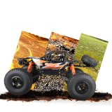 0662837 Climbing Cross Country High Speed Remote Control Car Toys with Favorable Price