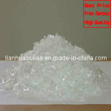Factory Price Pet Flakes for Bottles