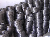 Black Annealed Wire with Lower Price