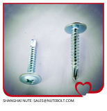 Stainless Steel 304 316 410 Self Drilling Screws St2.9 to St6.3, Flat Head, Pan Head, Hex Washer Head, Truss Head, and So on