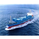Professional Sea Freight Shipping From China to Brisbane/Lyttelton