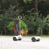New Ecorider Four Wheels Golf Scooter/Skateboard 60V 1000W Golf Cart with Big Battery