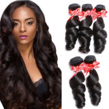 New Designed Cheap Virgin Brazilian Spring Curly Hair Weft