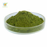 Best Price Free Sample Spinach Powder for Superfoods