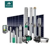 Stainless Steel DC&AC Compatible Solar Pump for 3 Years Warranty