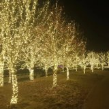 High Quality Warm White LED Christmas String Light for Outdoor on Tree with GS Certificate