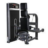 Seated Triceps Extension Professional Fitness Gym Machine Sports Equipment