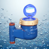 Dn15 Vertical Type Water Flow Meter Iron Shell Brass Coating Cover 	Inflow at Bottom