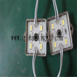 Wholesale Price 4 LED Module 5050 SMD LED