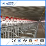 Wholesale Durable Pig Stall Gestation Crates with Best Price