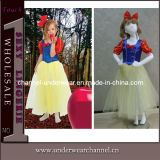 Fashion Deluxe Snow Princess Dress Costume 4001 (TLQZ4001)