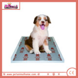 Super Absorbent Disposable Cartoon Printed Pet Pad