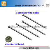 China Manufacturer Common Steel Nails