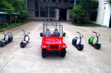 2017 Made in China Factory Price 200cc Adults Racing Go Kart for Sale (JYATV-020)