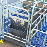 Galvanized Farrowing Crate for Sow Piggery Eequipment