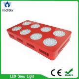 Red blue Light 432W Plant Supplementary Lighting LED Grow Light Lamp for Indoor Hydroponic Systems